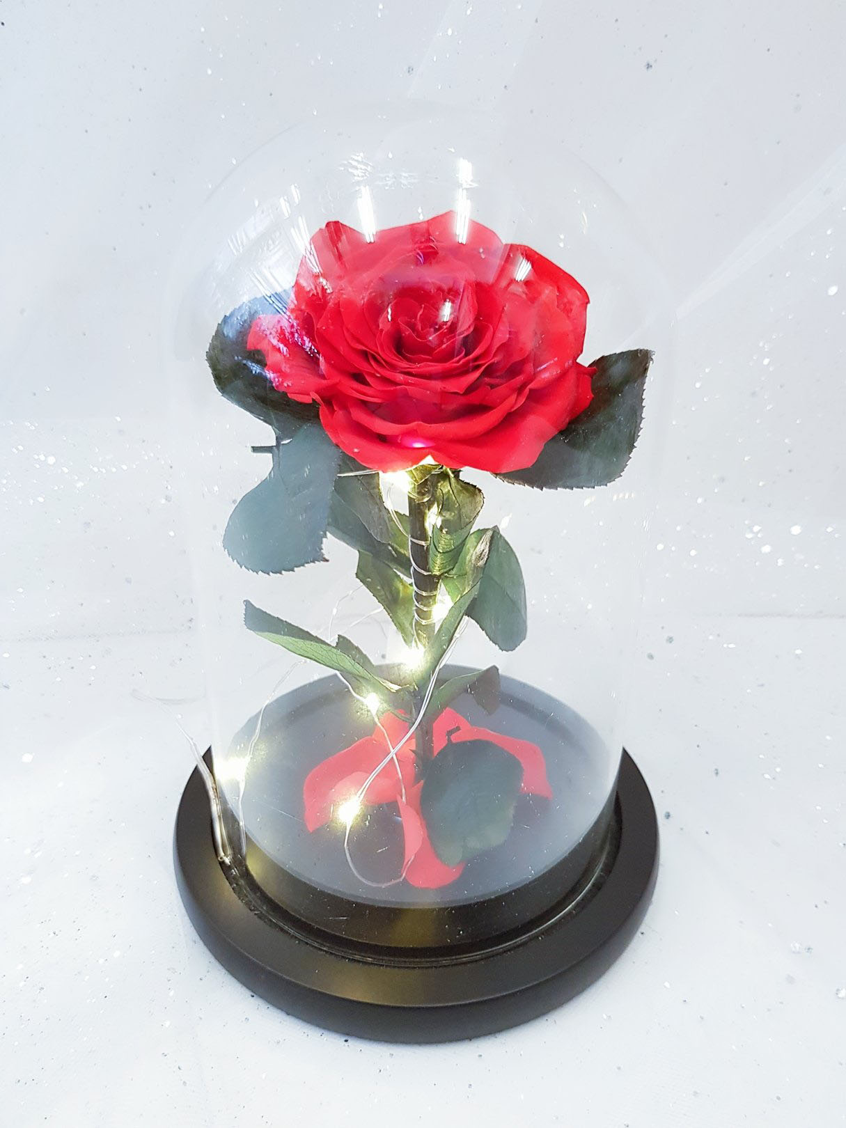 Beauty And The Beast Rose With LED Light In Glass Dome